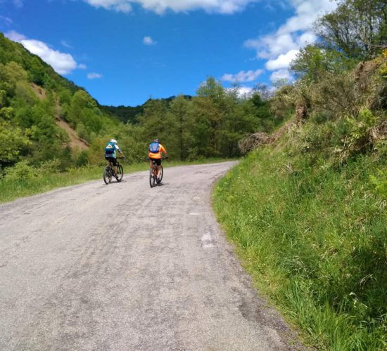 viaje en bici organizado desde roncesvalles